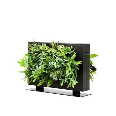LiveDivider PLUS 1 zwart, de groene roomdivider