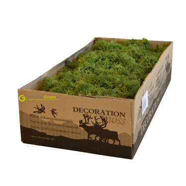 Rendiermos mos groen 2650 gram