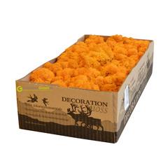 Rendiermos oranje 2650 gram