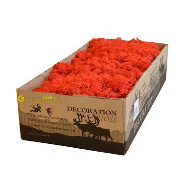 Rendiermos rood 2650 gram