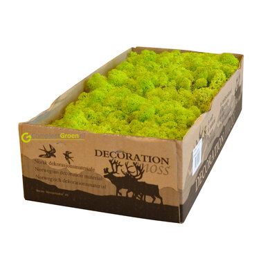 Rendiermos spring groen 2650 gram