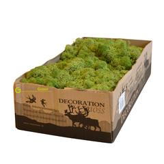 Rendiermos medium groen 2650 gram