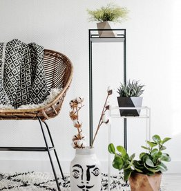 ECHO Plant Stand