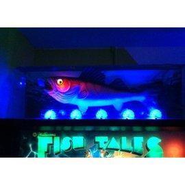 Dome Fish Tales