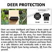 Bright Eyes Solar Powered Fox Deterrent | Pest Deterrents