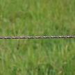 TurboLine Rope Braided 200 m - Terra