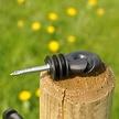 Screw-in Insulator Small (25 pcs.)