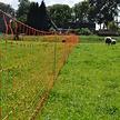 Sheep Netting 90 cm | 50 m Single Pin - Orange