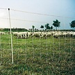 Gallagher Turbo Sheep netting - single pen, 50m