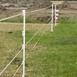 2x5 Duopack Horse Post 1.55 m - White