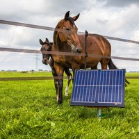 Shop all types of electric fence energisers