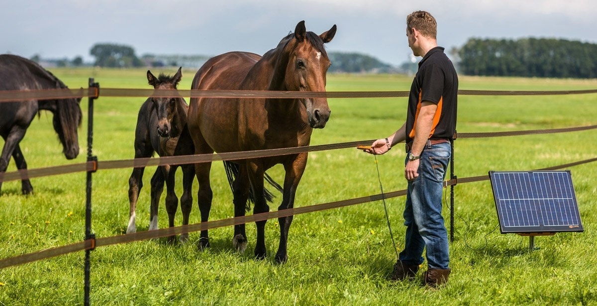How To Set Up Electric Fencing for Horses