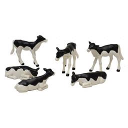 Calves (6)