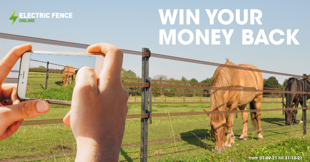 Win your money back!