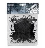 Set 12 Spinnen (5 x 6 cm)