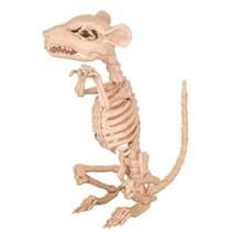 Rat Skelet