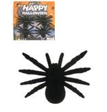 Spinnen - 4 op kaart