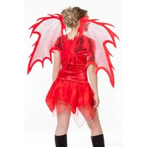 Vleugels duivel 105cm