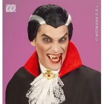 Pruik Vampier kort