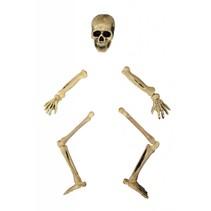 Lawn Skeleton decoratie