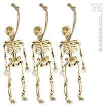 Skeletjes 15cm (3st)