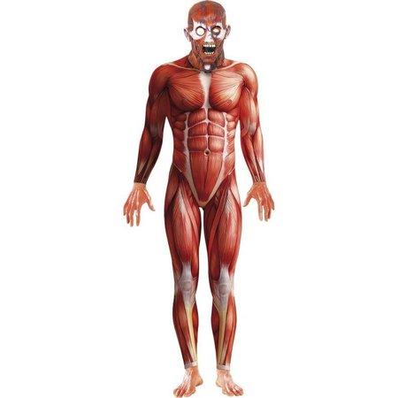Anatomie kostuum
