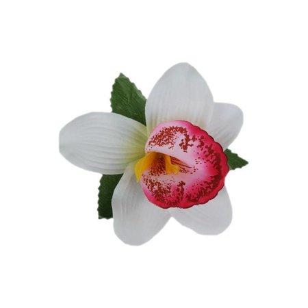 Haarbloem Orchidee Wit