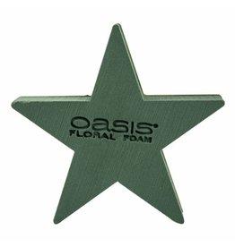 OASIS® BIOLINE® Ster 25x25x4,5cm | 2st
