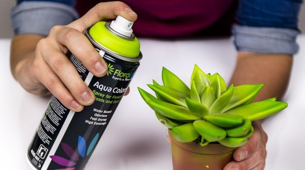 Floralife® Aqua Color Spray - Video's
