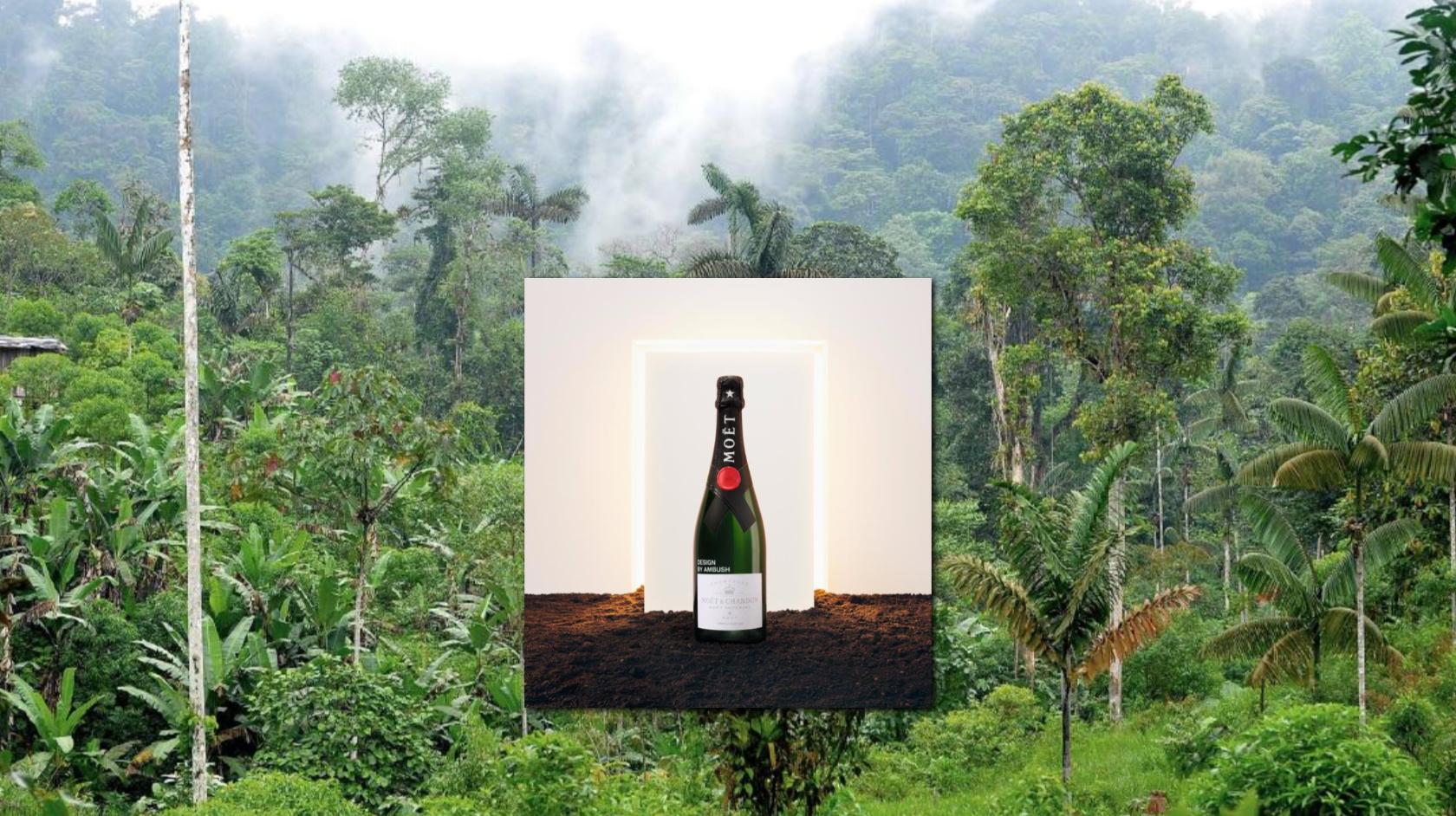 Moet & Chandon by AMBUSH - Deze Limited Edition steunt het regenwoud