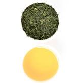 Organic Japanese Sencha - 50 gram