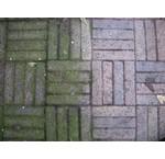 Grüne Ablagerungen von Algen mit Essig entfernen?