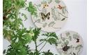 Zuperzozial bamboe servies-botanisch bord groot