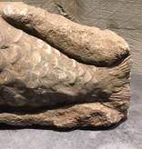 Stenen vis klein