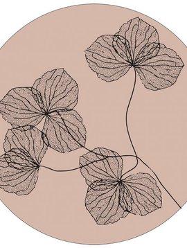 Muurcirkel gedroogde bloemen