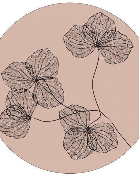 Label-R Muurcirkel gedroogde bloemen oudrose