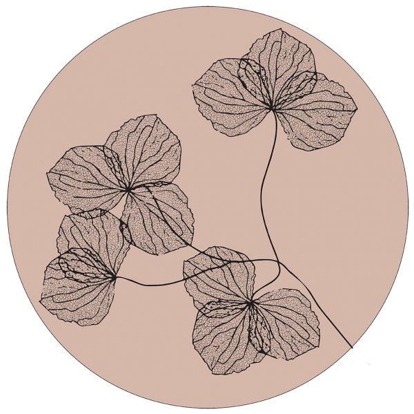 Muurcirkel gedroogde bloemen oudrose
