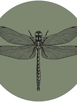 Label-R Muurcirkel libelle