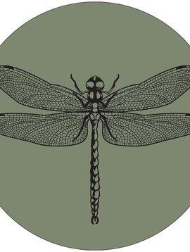 Muurcirkel libelle