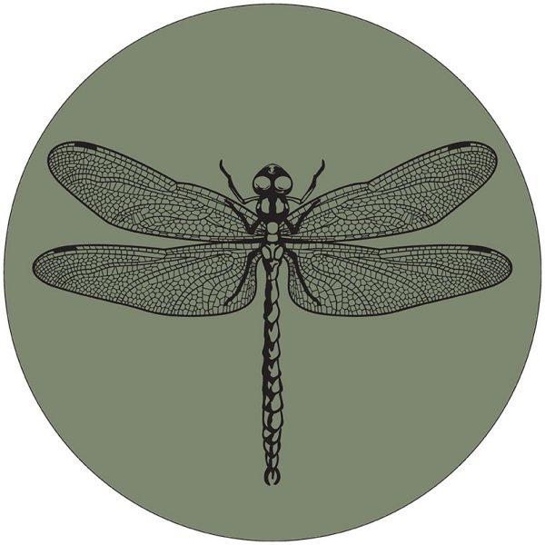 Muurcirkel libelle olijfgroen