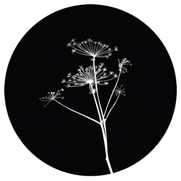Muurcirkel Bereklauw zwart/wit