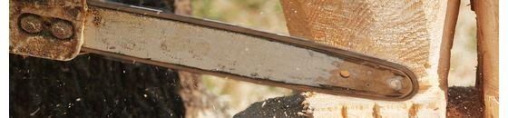 Oregon Carving Sägeketten und Führungsschienen
