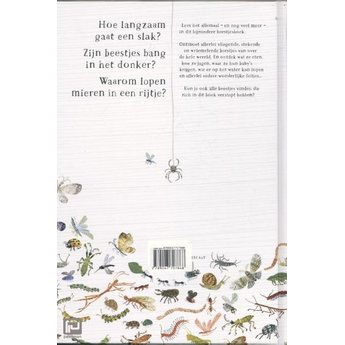 Lemniscaat Het bijzondere beestjesboek