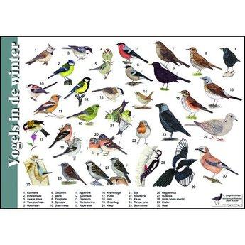 Tringa paintings natuurkaarten Natuur zoekkaart Vogels in de winter
