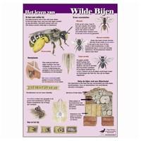 Herkenningskaarten Het leven van wilde bijen
