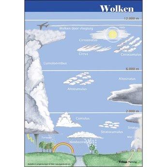Tringa paintings natuurkaarten Natuur zoekkaarten Wolken