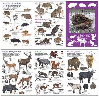 Tringa paintings natuurkaarten Wie ben ik? Compacte zoekkaart Zoogdieren