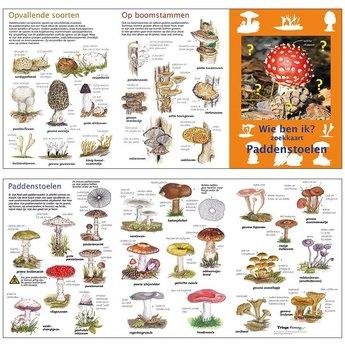 Tringa paintings natuurkaarten Wie ben ik? Compacte zoekkaart Paddenstoelen