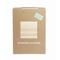 Spinifex Cluster starter 34 stuks