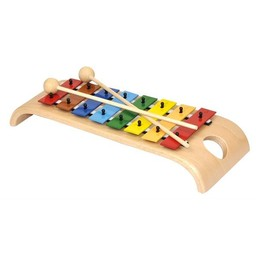 Voggenreiter kindermuziekinstrumenten Wondermooie Xylofoon